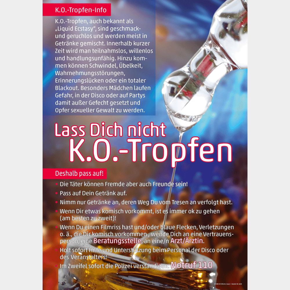 Plakat (DIN A3) •